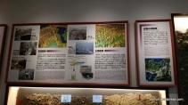Kyoto University Museum - zainuri.wordpress (1)