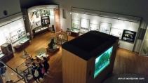 Kyoto University Museum - zainuri.wordpress (13)